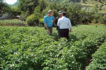 Saatkartoffel-Projekt in Buzaishte