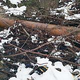 Das 50 Jahre alte Rohr ist an vielen Stellen durchgerostet