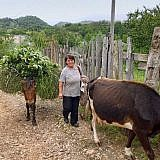 Die meisten Familien leben von ihrer kleinen Landwirtschaft