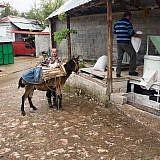 … z.B. für den Besuch in der Dorfmühle