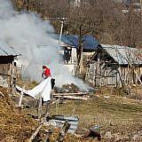 Landwirtschaft in Bishnica