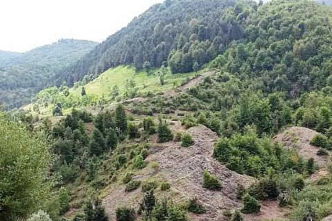 Bergwald mit Erosionsflächen - typisch in den Mokra-Bergen