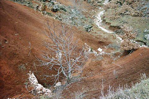 Erosionsschäden, 2004