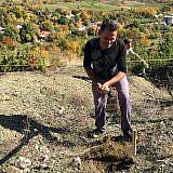 Bashkim gräbt ein Pflanzloch, …