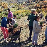 Start der Baumpflanzaktion in Bishnica