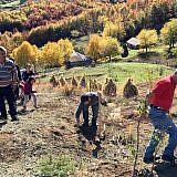 … um die kahlen Stellen oberhalb des Dorfs zu bepflanzen