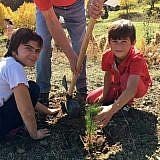 Auch die Kinder helfen beim Pflanzen …