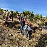 Baumpflanzaktion 2017 in Bishnica