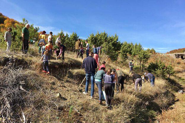 Auch bei der Pflanzaktion 2017 in Bishnica haben sich Schüler und Dorfbewohner beteiligt